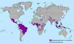 virus del zika 201